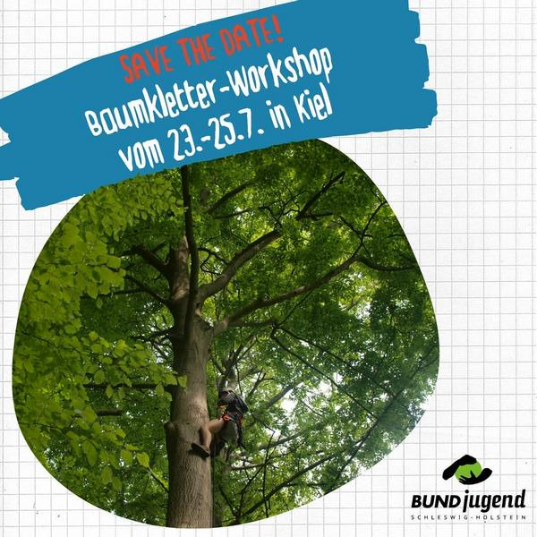 baumkletter workshop
